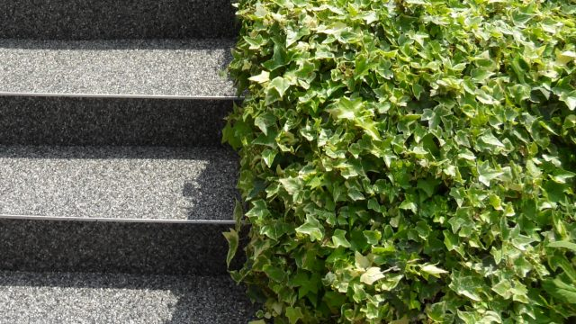 Naturstein-Teppich
